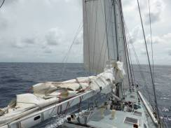 mainsail down